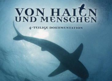 Of Sharks and Men - DVD Cover Title (c) LOOKSfilm